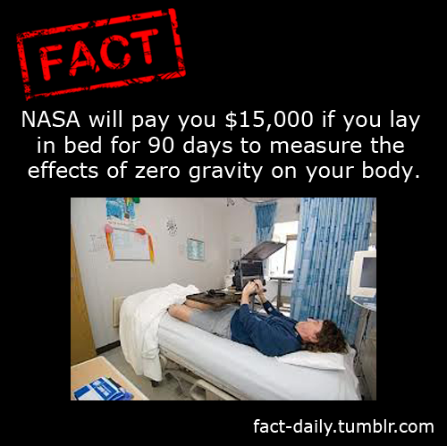 fact-daily:  http://Fact-Daily.tumblr.com