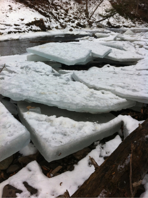 From today's hike: ice blocks melting in the stream.