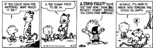 (via May 20, 1990: Advice on Life from Calvin and Hobbes Creator Bill Watterson | Brain Pickings)