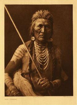 Wolf, Apache by Edward Curtis