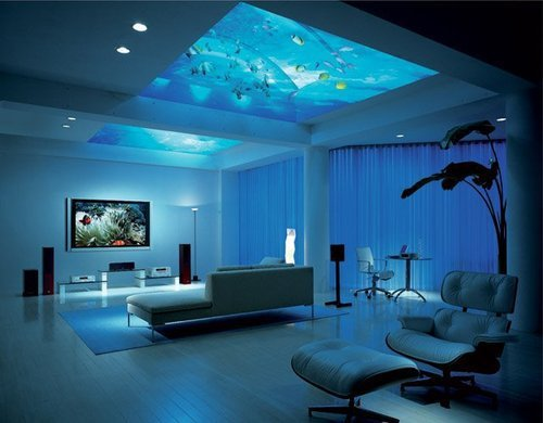 That's a creative use of an aquarium!