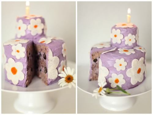 "Wild Blueberry Daisy Cake(makes one 2 level round cake, first level - 6"" diameter x 4"" height, second - 3"" x 2"")Cake Batter 12 ounces soft dates - chopped 1/4 plus 1 tablespoon coconut oil- melted 1 tablespoon vanilla extract pinch of salt 4 cups plain almond pulp left from making almond milk 1 1/2 cup fresh blueberries  1-2 tablespoons freshly squeezed lemon juice In a food processor, blend the chopped dates into a paste, add little bit of water if needed. Don't worry if the paste is not completely smooth. Add coconut oil, vanilla, and salt. Continue mixing. Add the almond pulp, blueberries, lemon juice, and mix well to incorporate. Do it in two batches, if your food processor can't handle the whole amount. You should end up with soft and light to touch cake batter. If your almond pulp is too wet, add a little more of it to your batter. If too dry, add some blueberries, or a splash of almond milk.Blueberry Frosting 3 cups cashews - soaked for 2 hours 3 cups almond milk 1/2 cup light agave syrup 1 1/2 tablespoons freshly squeezed lemon juice 1 1/2 tablespoons vanilla extract or seeds of 1 vanilla bean small pinch of salt wild blueberry powder (optional) - to taste  1 1/4 cup coconut oil - melted 1 cup fresh blueberries In a high speed blender, combine all the ingredients with the exception of blueberry powder, coconut oil, and blueberries until very smooth. If using, start adding the blueberry powder, to achieve the desired shade of purple. You can also use fresh blueberries to add taste and colour instead. Add the coconut oil at the end to emulsify. Reserve about 2 1/2 cups of for frosting the cake. Transfer the rest to a bowl and mix in the fresh blueberries. AssemblySeparate the cake batter into four parts - three even ones and one for the small second level of the cake. If using a springform, lightly grease it with coconut oil. If using a cake pan without a removable bottom, line it with plastic or cake wrap. Spread one portion in the bottom of the pan in an even, flat layer. Top with a thick layer of frosting with the fresh blueberries. Put in the freezer for 1-2 hours, or until the cream is firm. Spread another layer of cake batter on top of the cream, following with the second layer of cream. Freeze for another 1-2 hours and finish with the last layer of cake batter. Put the cake in the freezer for 30 minutes before removing from the pan.For the small second level, repeat the same steps, with only one frosting layer in between two layers of batter.Frost the large cake first with the reserved frosting. Arrange the small cake on top and frost it. Arrange the daisies on top of the frosting. Keep refrigerated.Coconut DaisiesThese flowers were made by blending the meat of a young Thai coconut with a small amount of coconut water in a high speed blender. I didn't measure the precise amounts, just eyeballed them. Then, I added dried shredded coconut and some agave and blended until I achieved a smooth, thick mixture. Then spread the mixture on Teflex-covered dehydrator trays, dried for an hour or until the surface became dry and I could cut out the flowers with a cookie cutter. After cutting, I left them in the dehydrator for another couple hours, until completely dry and easily separated. Towards the end of the dehydration time, I squeezed some fresh mango puree in the center of each flower, using a piping bag."