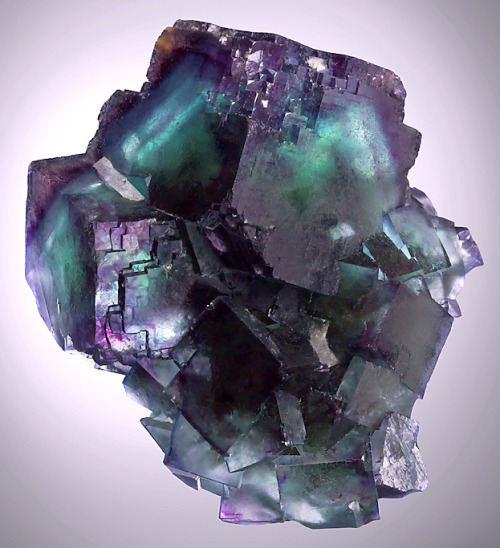 Fluorite from Illinois by Exceptional Minerals
