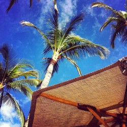 ☀🌴 (at Kings' Land Pool Bar)