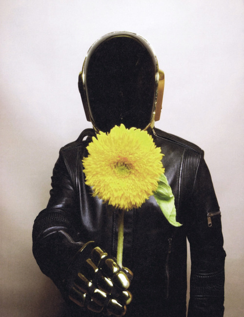 daedazer:  here's a flower. love, Daft Punk