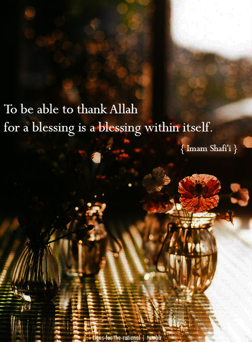 "signs-for-the-rational:  ""To be able to thank Allah for a blessing is a blessing within itself."" - Imam Shafi'i   [signs-for-the-rational]"