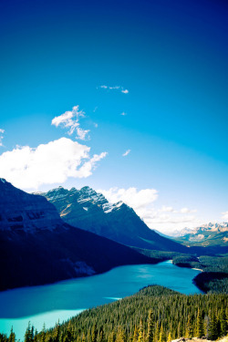 straangetimes:  Lake Peyto (by dave_apple)