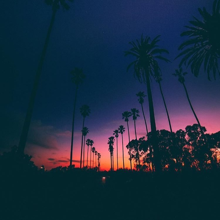 Sunset One Audiotistic Losangeles Cali California Sun Sky Trees Palmsprings City Dreamy Synthwave Synth Darksynth Darkwave 80s