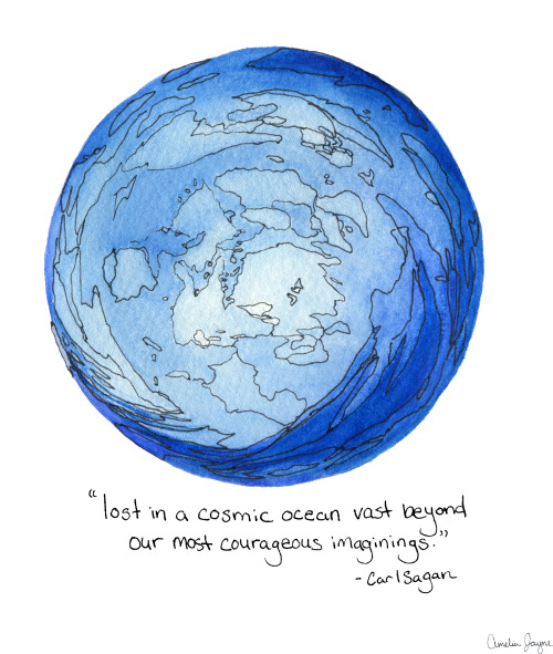 """Lost in a cosmic ocean vast beyond our most courageous imaginings."" -Carl Sagan"