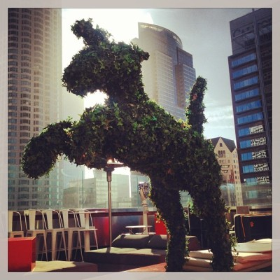 Unicorn  #topiary #LosAngeles @standardhotel  (at The Standard, Downtown LA)