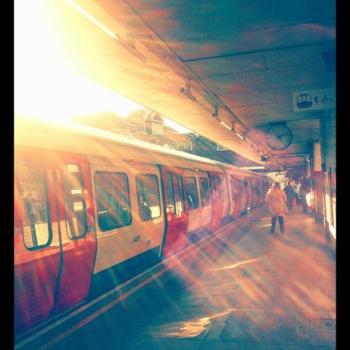 #sun #sunflares #tube #mytravelgram #harrow #tfl #metropolitan #harrowstation #travel #instatravel #instamood #light #sun