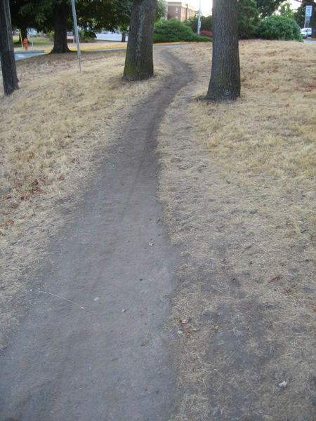 """A desire path (also known as a desire line, social trail, goat track or bootleg trail) can be a path created as a consequence of foot or bicycle traffic. The path usually represents the shortest or most easily navigated route between an origin and destination. The width of the path and its erosion are indicators of the amount of use the path receives. Desire paths emerge as shortcuts where constructed ways take a circuitous route, or have gaps, or are lacking entirely."" More at Wikipedia."