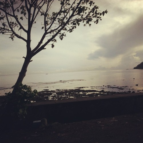 #bali #morning #view #igdaily #instago #iphonesia