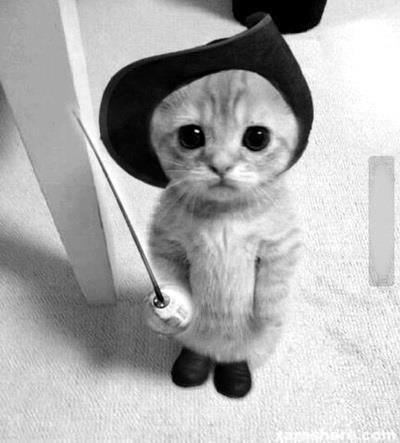 Awwwwwwwn | via Tumblr on @weheartit.com - http://whrt.it/12lfzBA