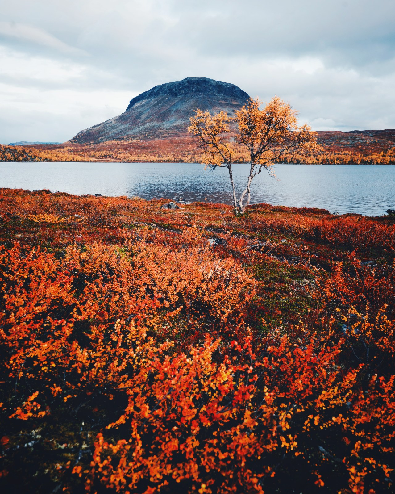 Autumn colors, Saana, northern Finland [OC] [3866x4831] #earth#images#earth pictures #I love earth  #earth is awesome
