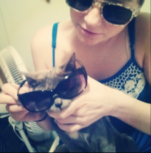 hahahahah me and my cat…