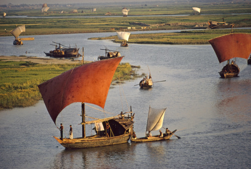 natgeofound:  Red sailed wood sailboats travel the winding Turag River in Bangladesh, September 1972.Photograph by Dick Durrance II, National Geographic