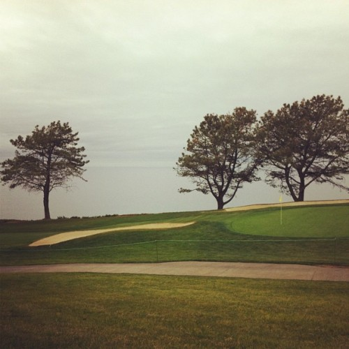 Farmers Open. 7th hole. (at Torrey Pines Golf Course)