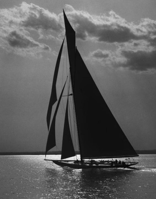 themindscanvas:  Sail and Shadow.