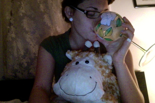 I've caved. These are my true loves. That's my giraffe pamplemousse.  He's my only true friend. He's a gay giraffe. He had a wild love affair with a stuffed animal turtle name Frederick once. Of course my ex had given me the turtle. Pamplemousse and Frederick broke up when the boy and I did. Sooooo, it's just me and the most snuggly giraffe being cuddly and languid. Someday we'll have a dog though.  It'll be cool.