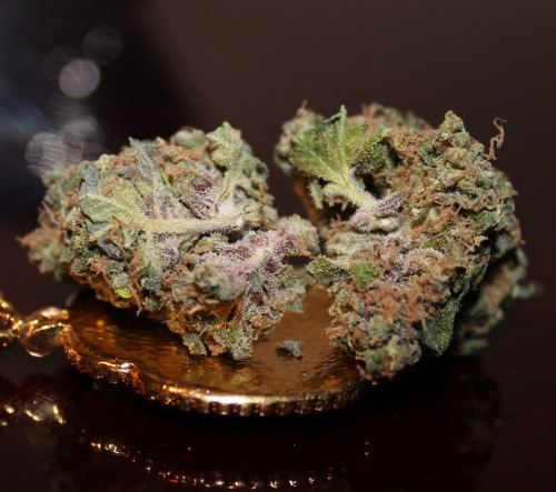 b-ak3d:  sativa-vs-indica:  Granddaddy Purp  Looks so delicious