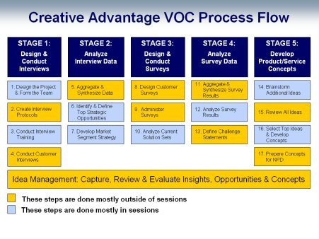 Voice of Customer Process Flow image