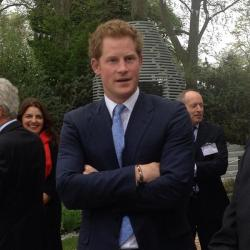 unna81:  Today Prince Harry at Chelsea flower show 2013