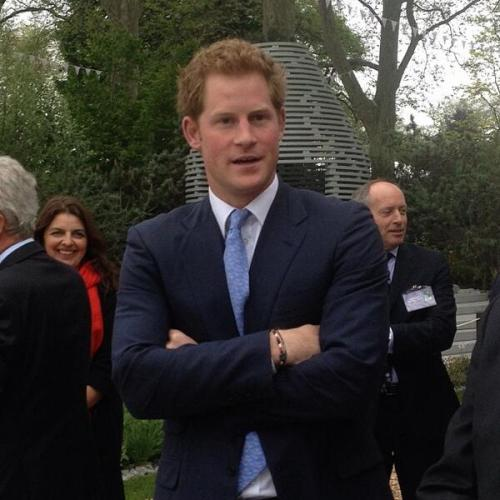 "ravishingtheroyals:  unna81:   Today Prince Harry at Chelsea flower show 2013   ""I TOLD you guys to stop writing dirty stories about me and you wouldn't listen. Now, you're all getting punished."""