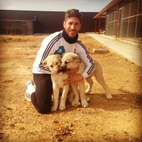"""I share a pic after running with Nuca & Jackie. They are Caucasian Shepherds. Good day for everyone!!"" [x]"