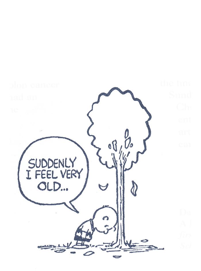 heyoscarwilde:  comic by Charles M. Schulz :: scanned from The Complete Peanuts :: Fantagraphics Books :: 2004  Boy can I relate to THIS.
