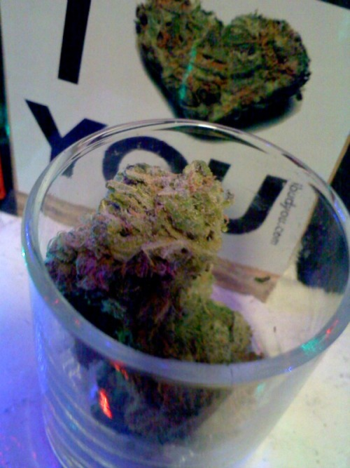 Happy end of the world! Stay Lifted off that good herb!