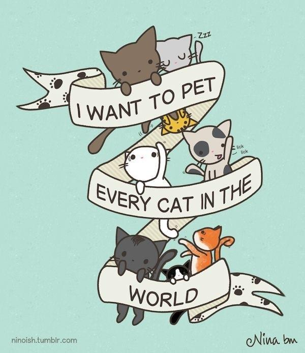 meow-is-a-wonderful-sound:  i want to pet all the cats in the world | via Facebook on We Heart It - http://weheartit.com/entry/62128248/via/thatsfoolishness Hearted from: https://www.facebook.com/photo.php?fbid=638956559451531&set=a.199278780085980.56134.100000115796710&type=1&theater