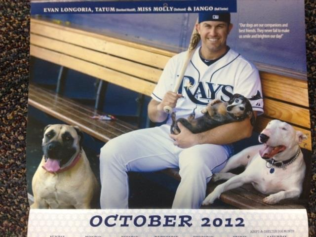 bullterrierlove:  Evan Longoria, of the Tampa Bay Rays, with his dogs! Photo in the 2012-2013 calendar benefiting Pet Pals Animal Shelter  aw he has a bull terrier
