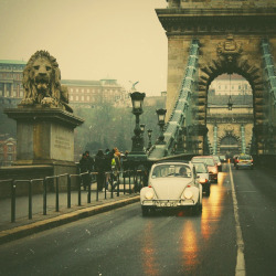 gold-hair-green-eyes:  Chain Bridge.