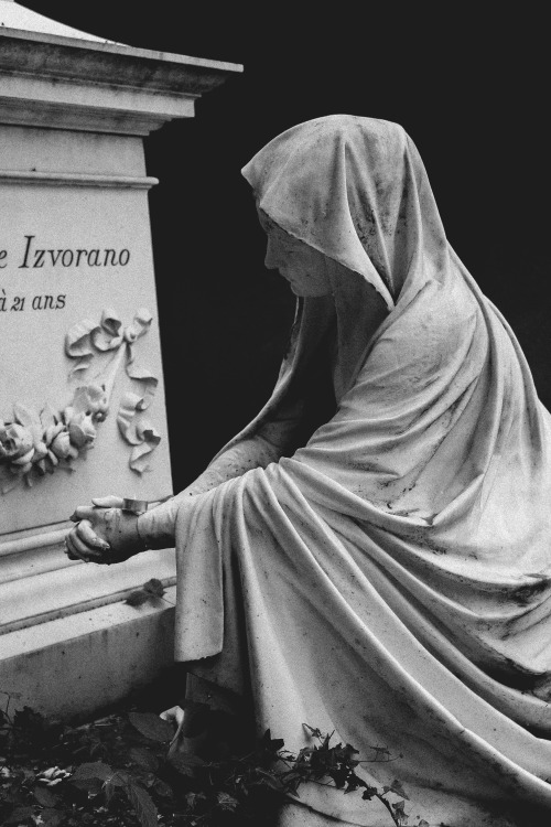 i died for beauty but was scarce Judge tenderly — of me 441: this is my letter to the world i died for beauty —  but was scarce adjusted in the tomb, when one who died for truth, was lain.