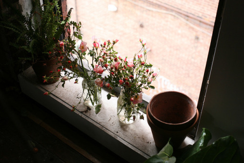 untitled by Amy Merrick on Flickr.