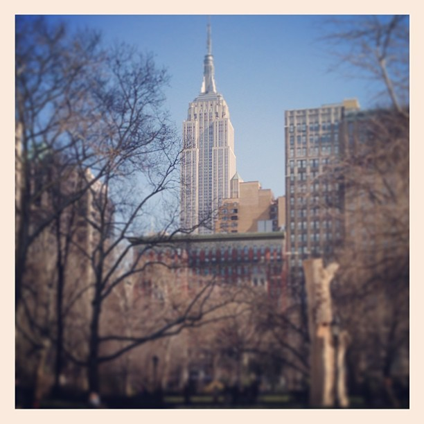 The view from Madison square park #madisonsqaurepark #empirestate #nyc #ny  (at Madison Square Park)