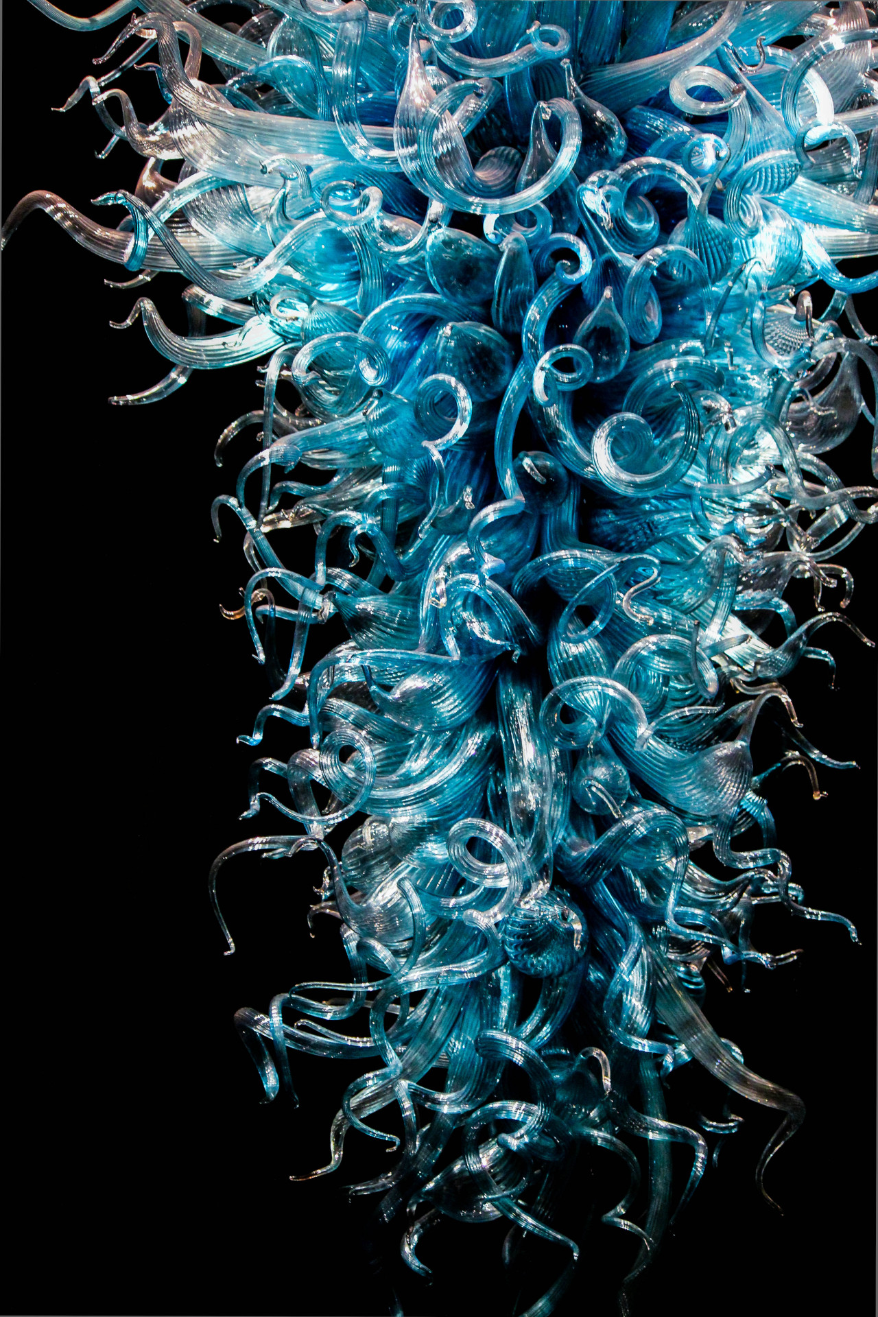 dale chihuly:blown glass sculpture