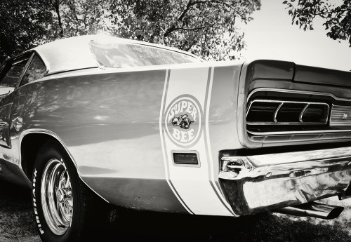 Nasty Stinger Starring: Dodge Coronet (by tvDAVEpgh)