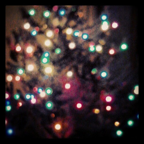 Tree lights are going on#christmas #lights #winter #tree #bokeh #blur #colors #holiday