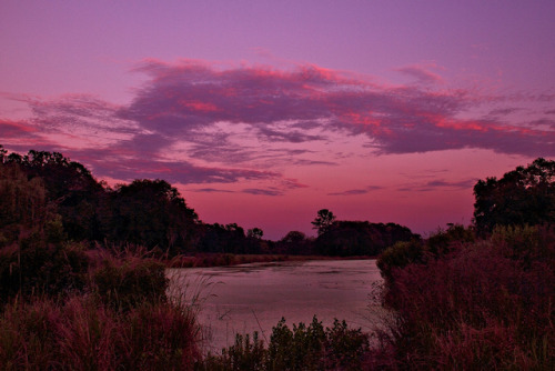 intracoastal-wanderings:  Evening sets inKings Grant, SC