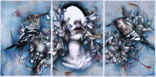 """Self Esteem"" 2013, colored pencils on paper, cm 45x92 ""ANIMANERA"", Jonathan LeVine Gallery, NY, May 18"