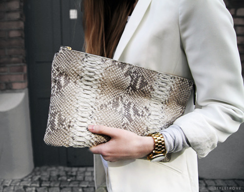 styletrove:  TREND WATCH: Snakeskin accessories.