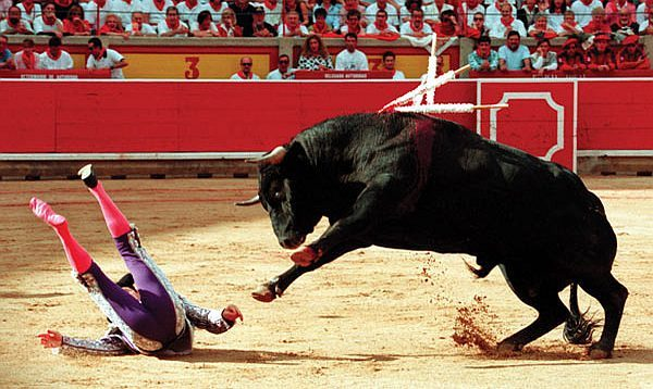 """Eric Nusbaum went to a bullfight in Mexico City, and, among other things, he realized Ernest Hemingway was totally wrong."""
