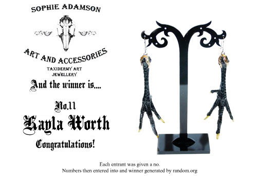 And the winner of the competition is…… KAYLA WORTH! Congrats :p Ill do another competition soon, thank you to everyone who entered <3