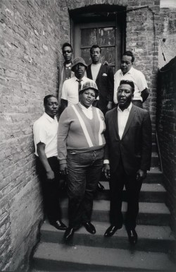 aconversationoncool:  Big Mama Thornton and The Muddy Waters Blues Band.
