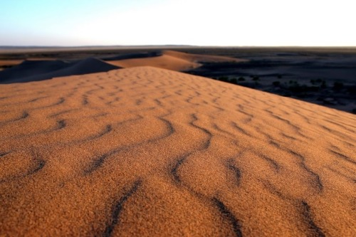 Sand pattern in the Gobi Desert.
