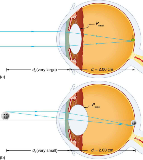 scienceisbeauty:  Physics of the Eye (via Connexions)  Further reading: How Vision Works.
