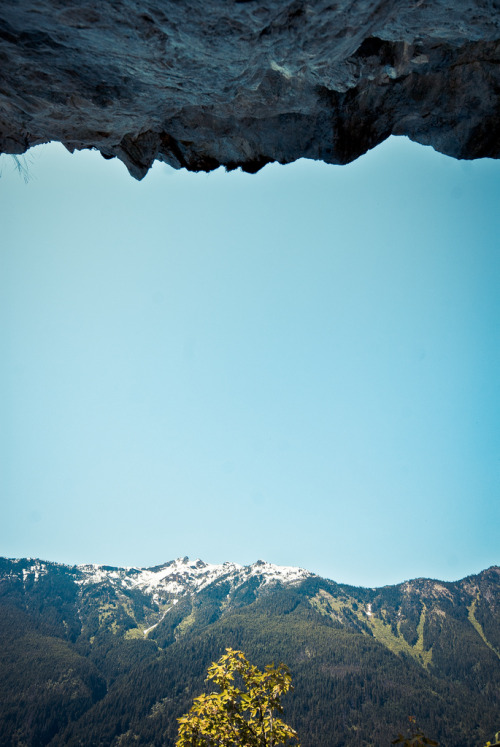 theoceanrolls:  Cliff, Tree, Mountain (by photosbysomeguy)