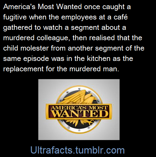 america&s most wanted | Tumblr